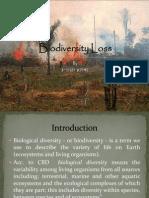 Biodiversity Assignment