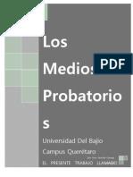 Medios Probatorios Julio
