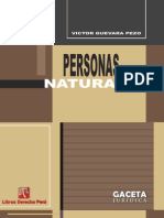 Personas Naturales - Victor Guevara Pezo
