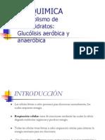 bioquim-glucolisis