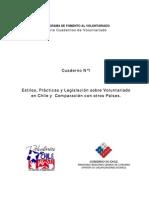 Voluntariado Chile