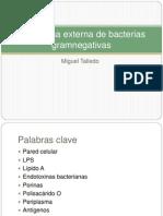 Clase04-Membrana Externa de Bacterias Gramnegativas