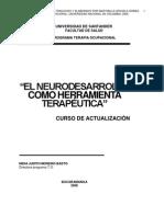 Neurodesarrollo Una Estrategia Terapeutica