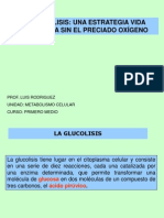 glucolisis-100427200413-phpapp02