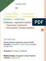 Presentasi Anabolisme