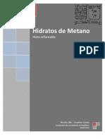 Hidratos de Metano INFORME