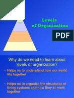 levels-of-organization-1202604875263200-5