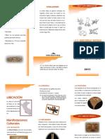 nazca-110729003827-phpapp01