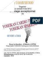 Affiche stage de training et sparring Tarbes 2012