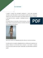 EXAME DO QUADRIL E DA PELVE