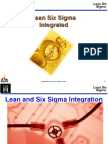 Lean Six Sigma Integrated