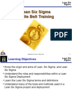 Lean Six Sigma Overview - White Belt Training