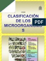 2 CLASIFICACIÓN Micro