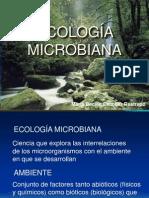 Carcterísticas de los ecosistemas MO