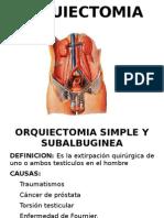 orquiedectomia