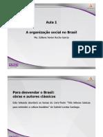 SSOC3 Organ Social Brasil Apresentacao Teleaula1 Tema1