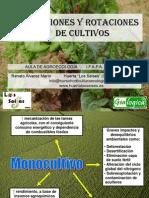 Aula de Agroecologifapa Chipiona_asociaciones y Rotaciones
