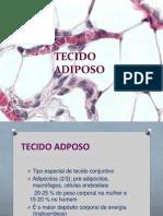 TECIDO ADIPOSO