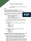 Guía de Resumen de Investigación de Mercado