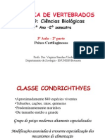 3-Peixes_cartilaginosos-aula