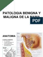 16.Patología Benigna y Maligna De La Mama