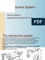 02.Zainuri Anatomi Organ Reproduksi Baru