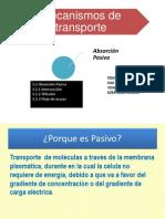 Mecanismos_de_transporte[1]