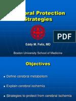 CerebralProtectionStrategies[3]