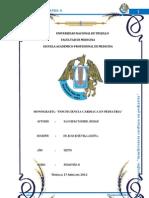 MONOGRAFIA DE ICC
