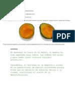 El Zapote Es Una Fruta Que Crece en La Selva Peruana