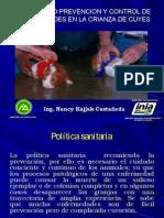 Diagnostico Prevencion y Control de Enfermedades en La Crianza de Cuyes www.peru-cuy.com