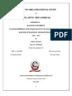 Organizational Study Report