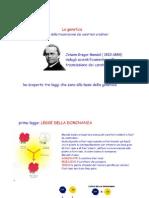91047600 La Genetica Di Mendel