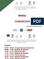 Modul Comunicare - Negociere - Constant In Udrea