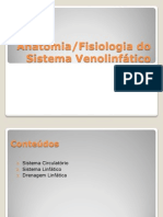 sistemavenolinftico-111010054628-phpapp02