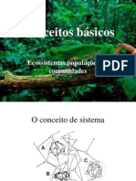 Ecossistemas conceitos      básicos