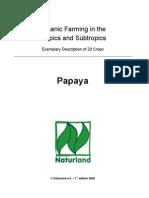 13237413-papaya