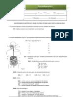 Teste - sistema digestivo - com correcção