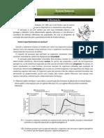 Ficha de Trabalho - vacinaçao