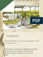Beneficio Humedo Del Cafe Expo