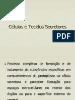 Células e Tecidos Secretores