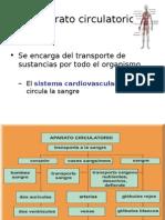 Clase 1 circulatorio.ppt