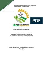 Informe de Condiciones de Salud Cefa 2012