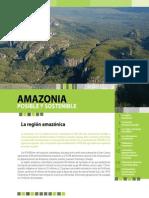 Folleto Amazonia Posible y Sostenible