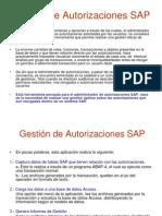 Autorizaciones SAP Jasper Inc