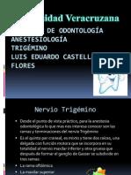 Anesteciologia Trigemino Expo