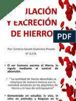 REGULACIÓN Y EXCRESIÓN DE HIERRO