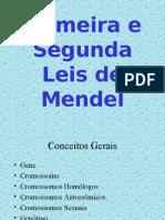 1 e 2 Lei de Mendel