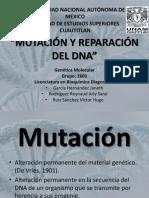 MUTACIONES, CAUSAS Y MECANISMOS Y REPARACIÓN deL DNA. (FINAL)