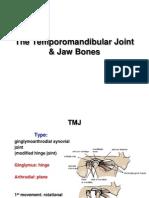 21-TMJ Jaw Bones E-learning